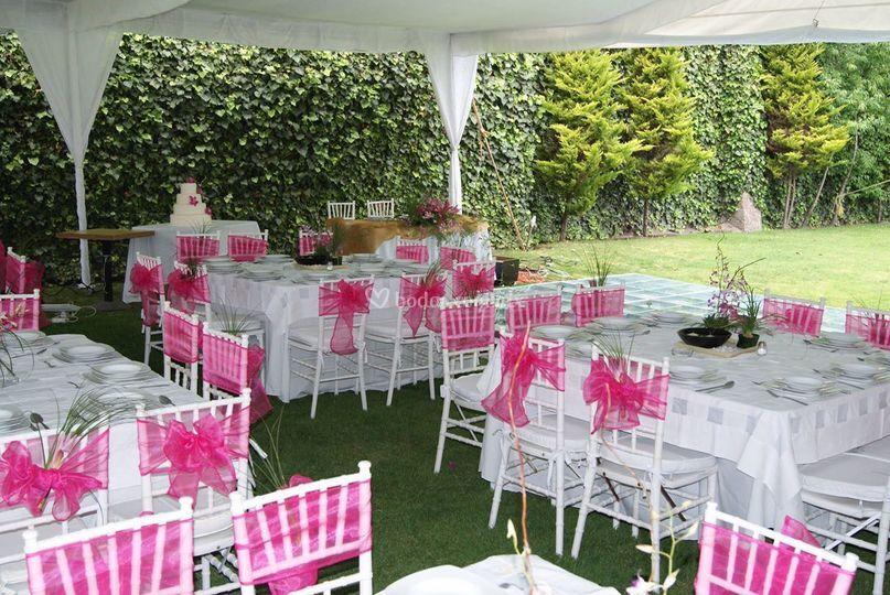 Montaje en rosa mexicano de jard n quinta real foto 83 for Jardin quinta real