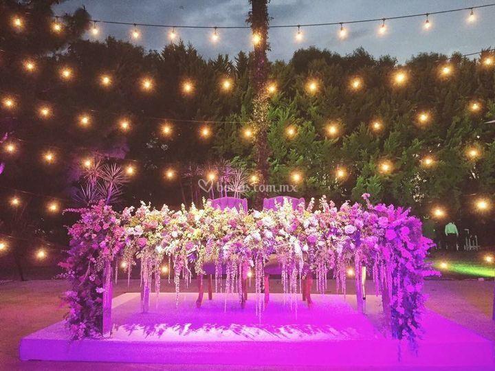 Carolina Cisneros - Event & Wedding Planner