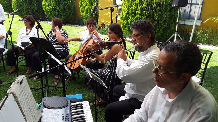 Cuarteto clásico con flauta
