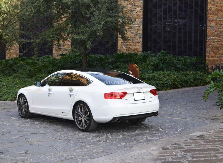 Audi 14