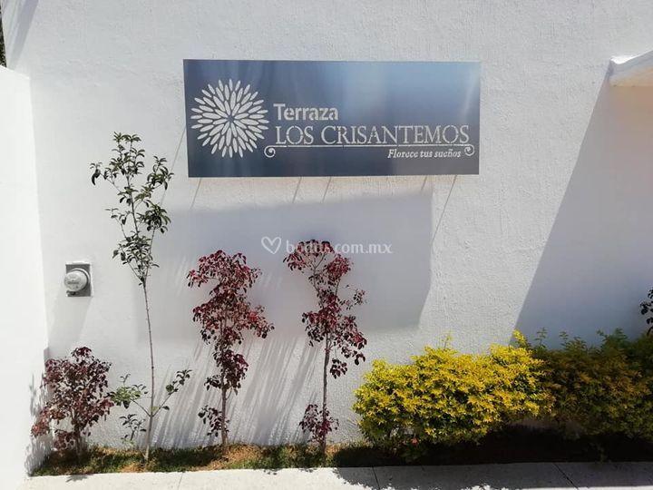 Terraza Los Crisantemos
