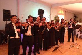 Violines Scala