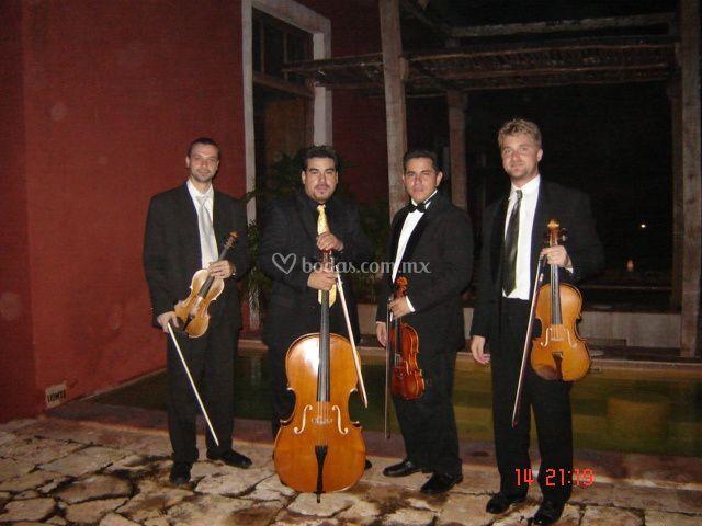 Cuarteto amadeus