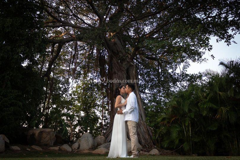 Banyan Tree Cabo Marqués