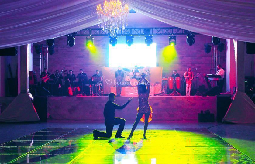 Show profesional de bailarines