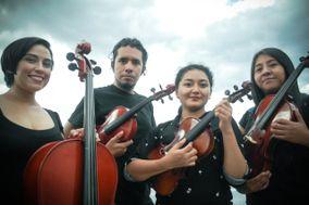 Cuarteto de Cuerdas Clío