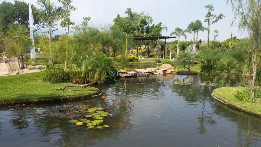Vista al Jardin