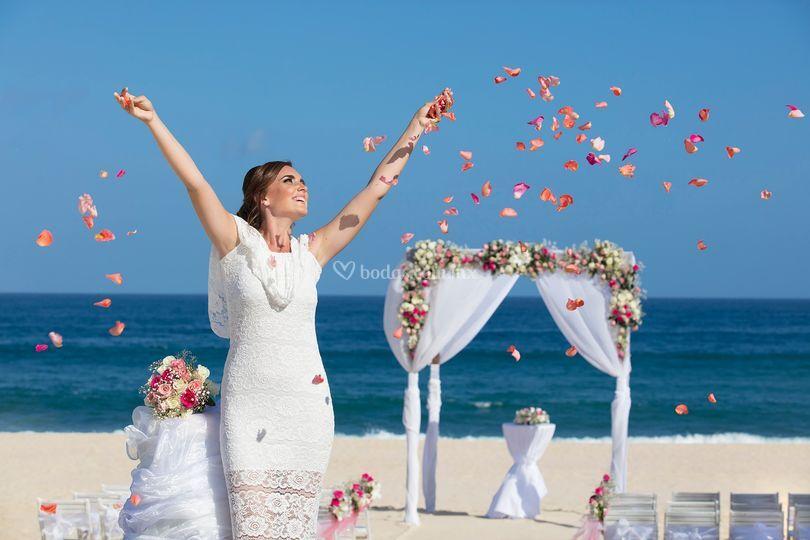 Reflect Los Cabos Resort & Spa by Dreams Wedding