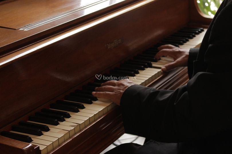 Pianista y renta de pianos