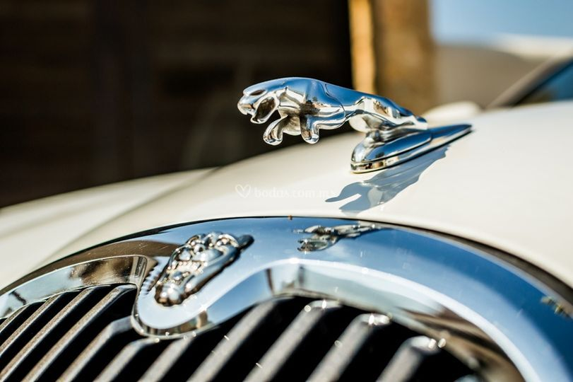 Jaguar S-Type blanco