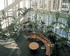Vista del jardín interior