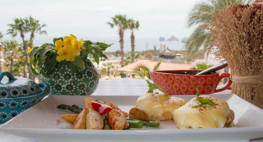 Cabo gourmet benedicts