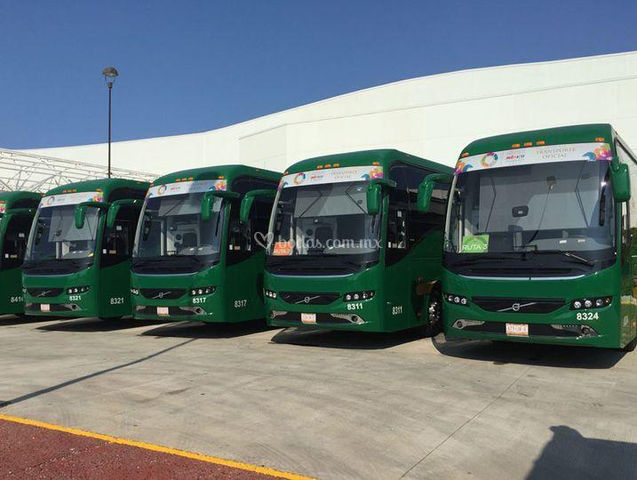 Autobuses, para invitados