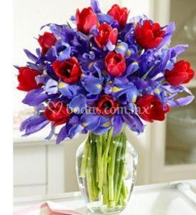 Besos de iris