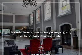 Plaza Camelinas
