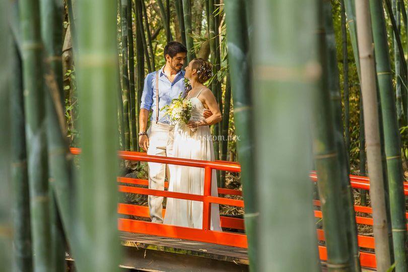 Bon Astre Weddings