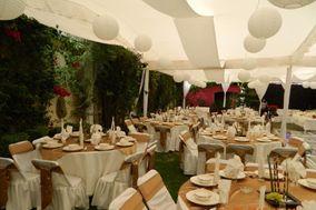 Salón & Jardín Hawaii 07