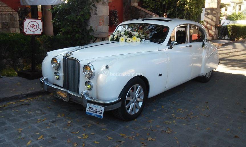 Jaguar 1952