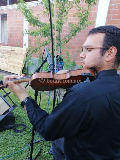 Microfonia para músicos