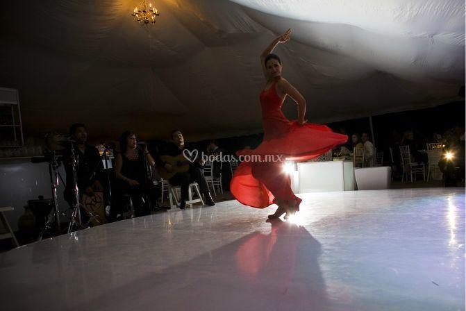 Shows de baile