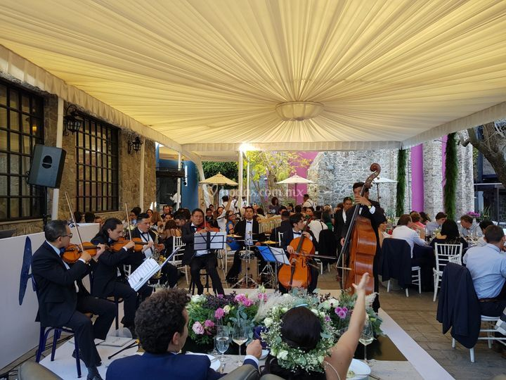 Bodas exitosas Puebla