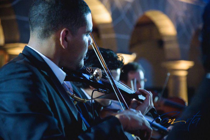 Violinistas solistas