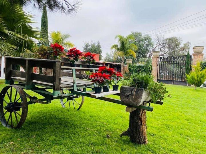 Decorado en jardín