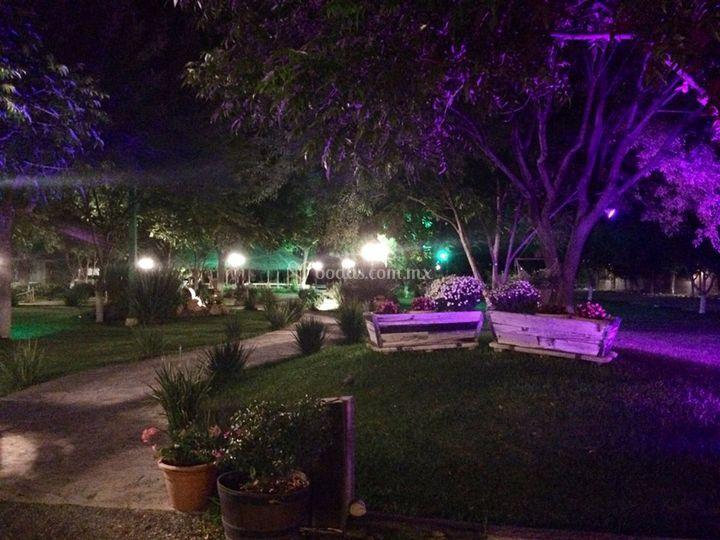 Jardines e iluminaci n de palapa jdf foto 12 - Iluminacion de jardines fotos ...