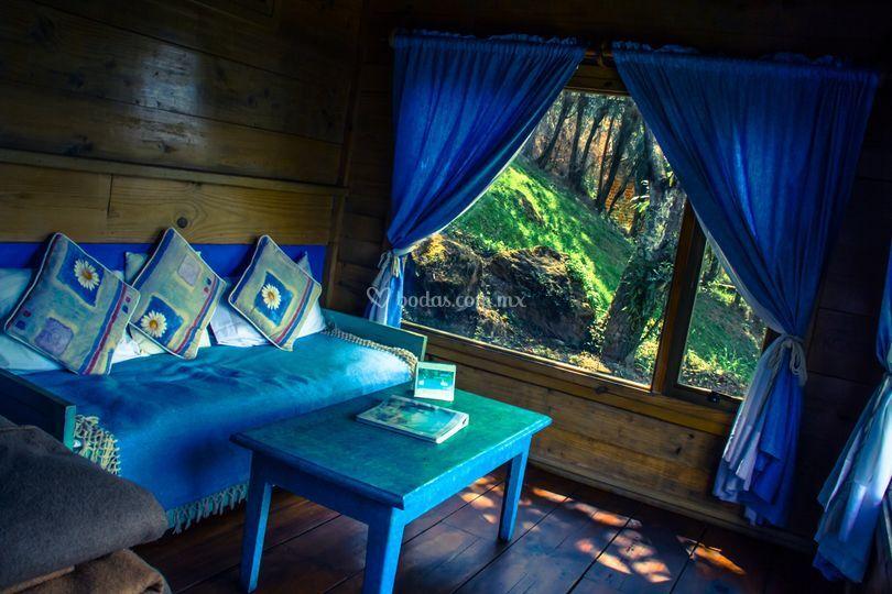Cabaña azul, Sección Orquídeas