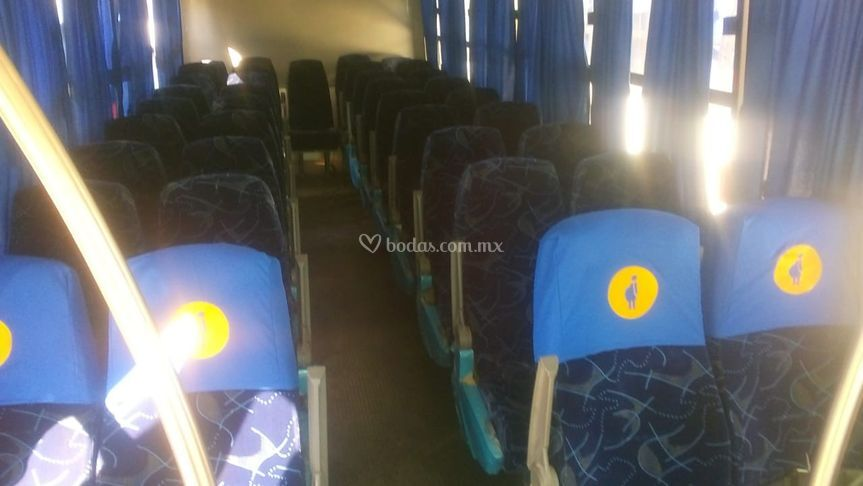 Autobuses interior
