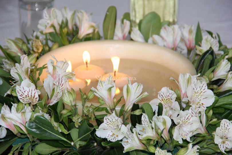Camacho velas flotantes - Proveedores de velas ...