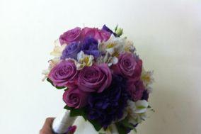 Floreria Lilys