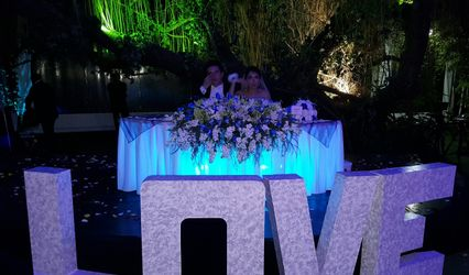 Fusion MX Wedding 2