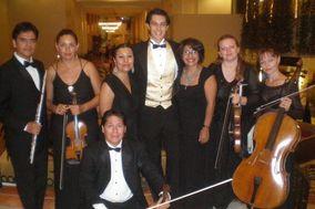 Vivaldi Música