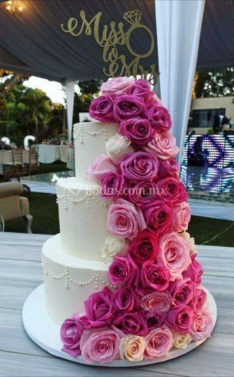 Cake betun