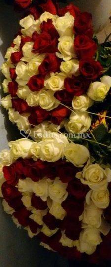 Bouquets bicolor