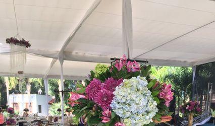 Daho Florería y Eventos