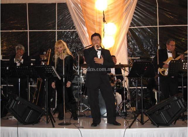 High Musical Show