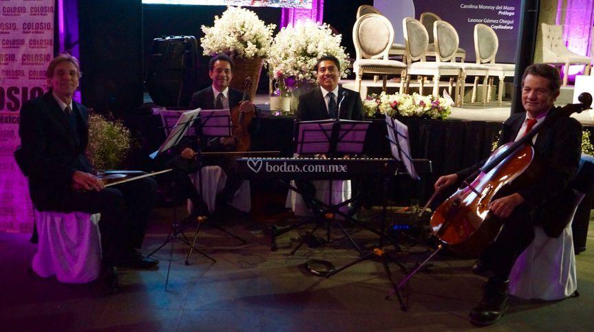Cuerdas y piano