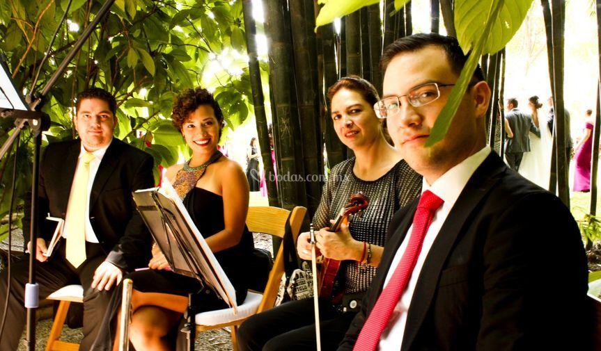 Tenor, soprano, violin, flauta