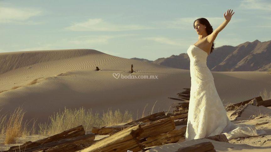 Bridemotion Trash The Dress
