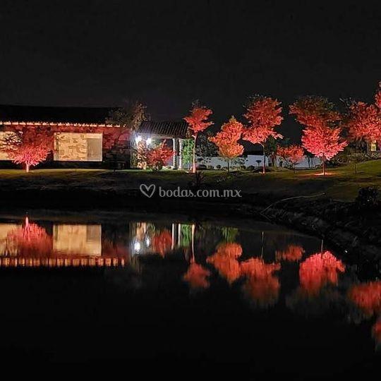 Lago iluminado
