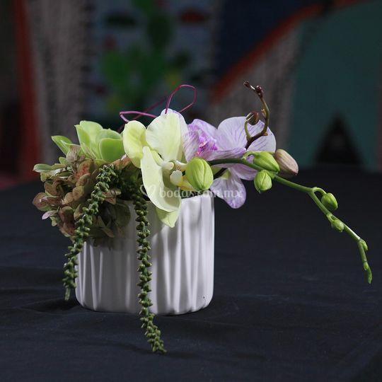 Centro de mesa orquídeas tahí