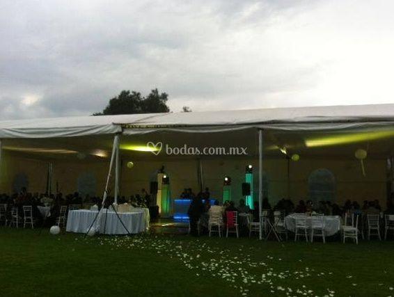 Ideal para tu evento