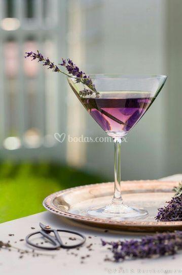 Martini berry