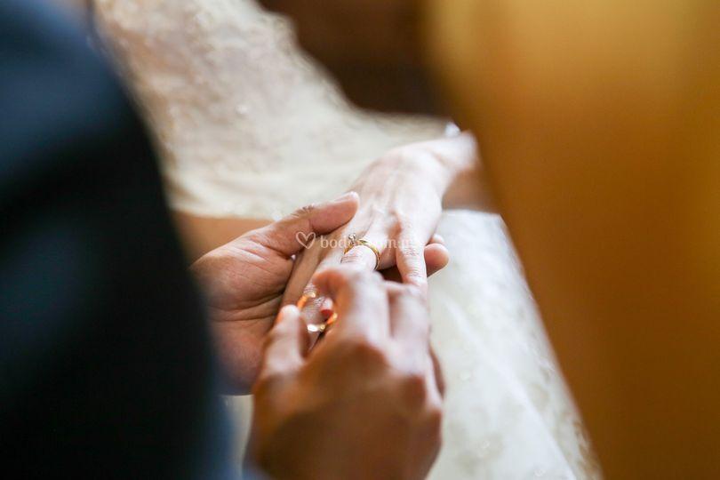 Intercambio de anillos.