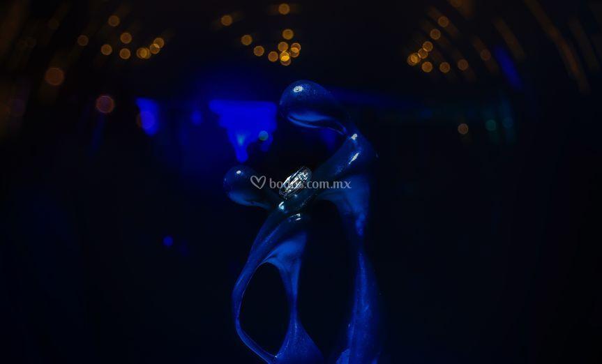 Loveblue & rings