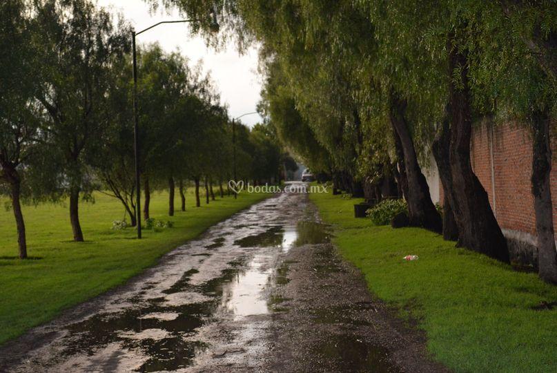 Entrada  Rancho San Cristóbal