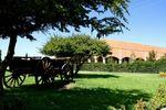 Amplios y hermosos jardines de La Hacienda San Ram�n