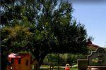 Jardines de La Hacienda San Ram�n